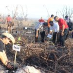 Perwakilan 91 Sinode Anggota PGI Tanam Pohon  di Taman Patung Kuda